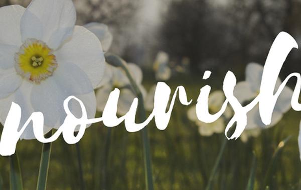 Nourish Your Divine Feminine